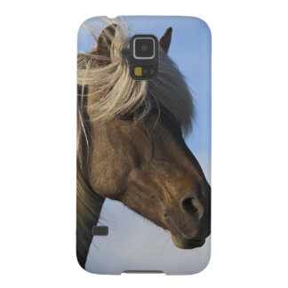 Head of Icelandic horse, Iceland Cases For Galaxy S5