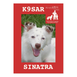 head-SINATRA, KlassKids Search Team K9 Pack Of Chubby Business Cards