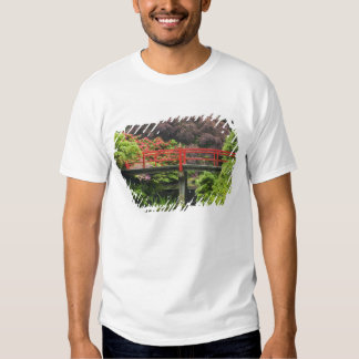 Heart Bridge with blossoming rhododendrons, Shirts