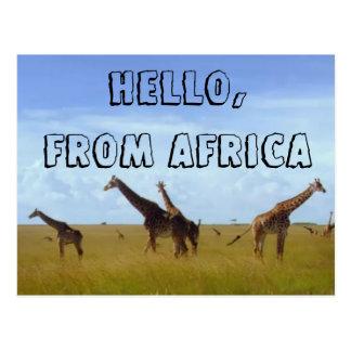 Hello with Love From Africa Hakuna Matata Postcard