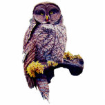 Hoo's Look'n Sculpture Pin Photo Sculpture Badge