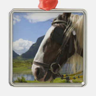 Horse, Gap of Dunloe, County Kerry, Ireland Silver-Colored Square Decoration