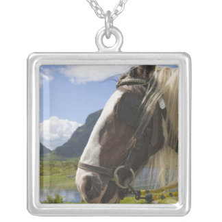 Horse, Gap of Dunloe, County Kerry, Ireland Square Pendant Necklace