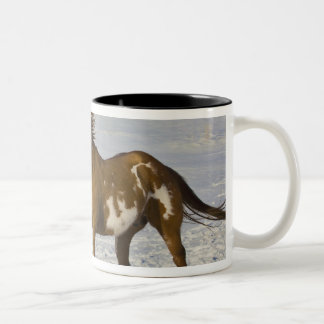 Horse Running in Snow Two-Tone Mug