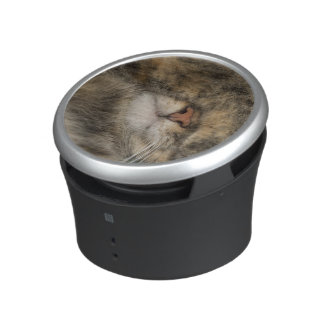 House cat covering eyes while sleeping bluetooth speaker