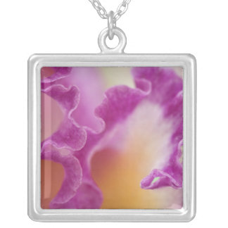 Hybrid orchid close-up, Delray Beach, Florida Square Pendant Necklace