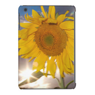 Hybrid sunflower blowing in the wind at dusk iPad mini retina cover