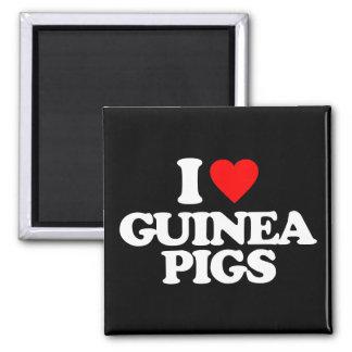 I LOVE GUINEA PIGS SQUARE MAGNET