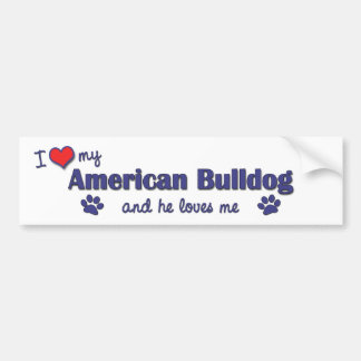 I Love My American Bulldog (Male Dog) Bumper Sticker