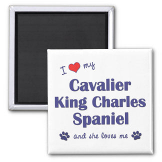 I Love My Cavalier King Charles (Female Dogs) Square Magnet