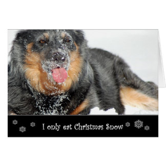 I Only Eat Christmas Snow Greeting Card
