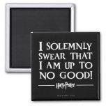 I Solemnly Swear Square Magnet
