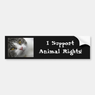 I Support Animal Rights Bumpersticker Bumper Sticker