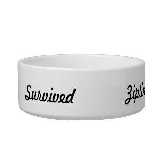 I survived ziplining! cat bowls