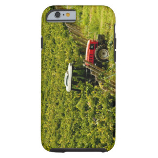 Italy, Tuscany, Greve. Pickers at work during Tough iPhone 6 Case