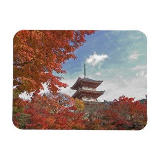 Japan, Kyoto, Pagoda in Autumn colour Rectangular Photo Magnet