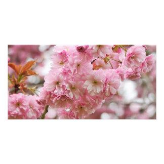 Japanese Cherry blossom Customized Photo Card