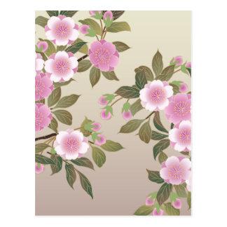 Japanese Cherry Blossoms Postcard