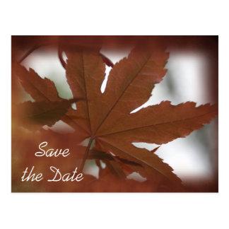 Japanese Maple Leaf Autumn Save the Date Postcard