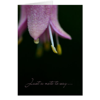 Just a note to say.... greeting card