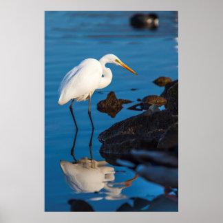 Lake Murray. San Diego, California Poster