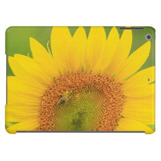 Large field of sunflowers near Moses Lake, WA 1 iPad Air Case