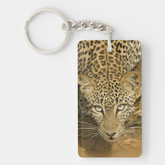 Leopard, Panthera pardus, drinking from a Double-Sided Rectangular Acrylic Key Ring