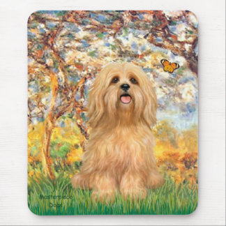 Lhasa Apso 9 - Spring Mouse Pad