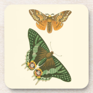 Lightly Bordered Butterfly Painting Beverage Coaster