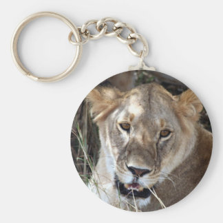 lion looks basic round button key ring