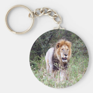 lion prowl basic round button key ring