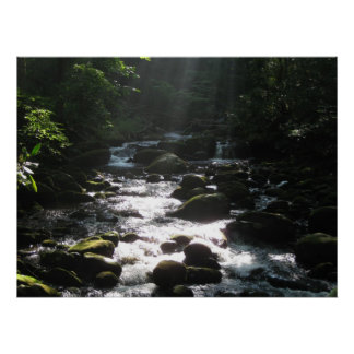 Little Pigeon River 2 Poster