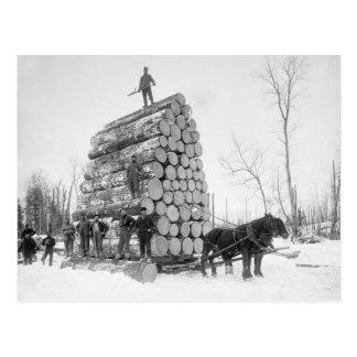 Loggers At Work, 1890 Postcard