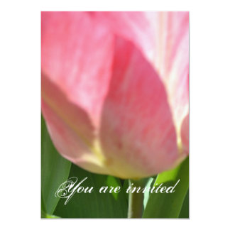 Lollypop Tulip 13 Cm X 18 Cm Invitation Card