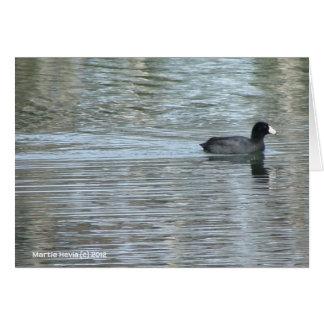 Lone Duck II Greeting Card