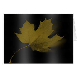 Lonely Maple Leaf Note Card
