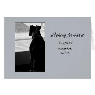 Look Forward Greeting Card