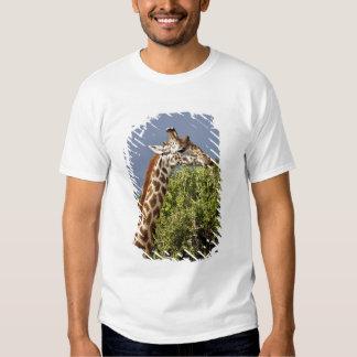 Maasai Giraffe (Giraffe Tippelskirchi) as seen 3 T-shirt