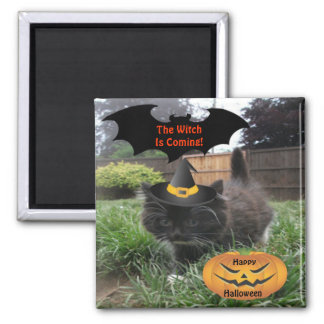Magnet Black Cat The Witch Is Coming