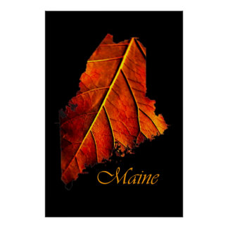 Maine Posters   Maine Fall Foliage Poster