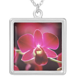 Malaysia, Orchid Square Pendant Necklace