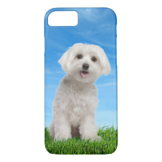 Maltese Puppy iPhone 7 case