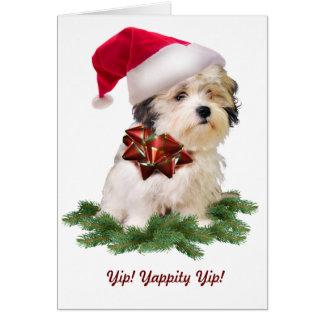 Maltese Theme Christmas Card