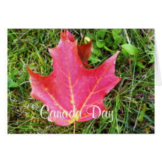 Maple Leaf on Grass Note Card-Canada Day Note Card