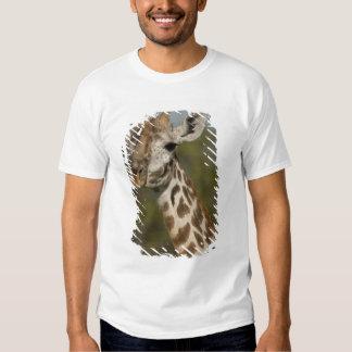 Masai Giraffe, Giraffa camelopardalis Tee Shirts