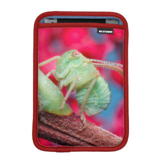 Minute Bug On Branch. Kruger National Park iPad Mini Sleeves