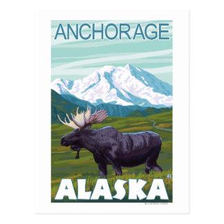 Moose Scene - Anchorage, Alaska Postcard