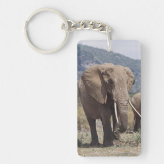 Mother elephant walking with elephant calf Double-Sided rectangular acrylic key ring