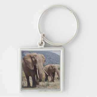 Mother elephant walking with elephant calf Silver-Colored square key ring