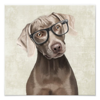 Mr Weimaraner Photo Art